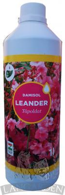 damisolleand1l1.jpg