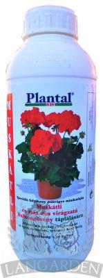 plantalmusk1l1.jpg