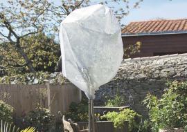 WINTERTEX50 Nem szőtt textília növények fagykár elleni védelmére