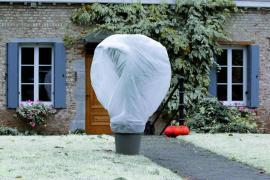 WINTERTEX30 Nem szőtt textília növények fagykár elleni védelmére