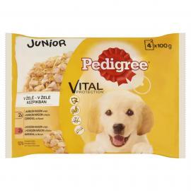 Pedigree Alutasakos 4*100g Pack Junior Csirke&rizs, Marha&rizs