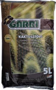 Kaktuszföld Garri 5l