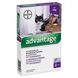Advantage 80 macska/nyúl 0,8 ml 4 kg felett 4x