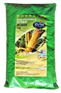 Hibrid kukorica Mv Tarján (FAO 380) 1kg