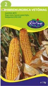 Hibrid kukorica Gazda (FAO 400-499)