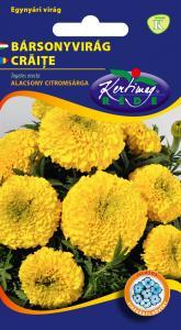 Bársonyvirág Nagyvirágú alacsony, citromsárga