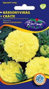 Bársonyvirág Nagyvirágú magas, citromsárga