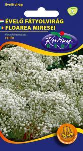 Évelő fátyolvirág