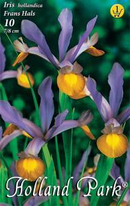 Iris Frans Hals